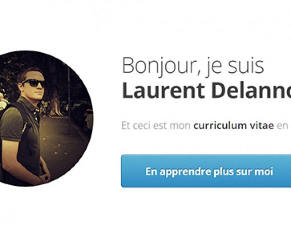 Laurent Delannoy – curriculum vitae